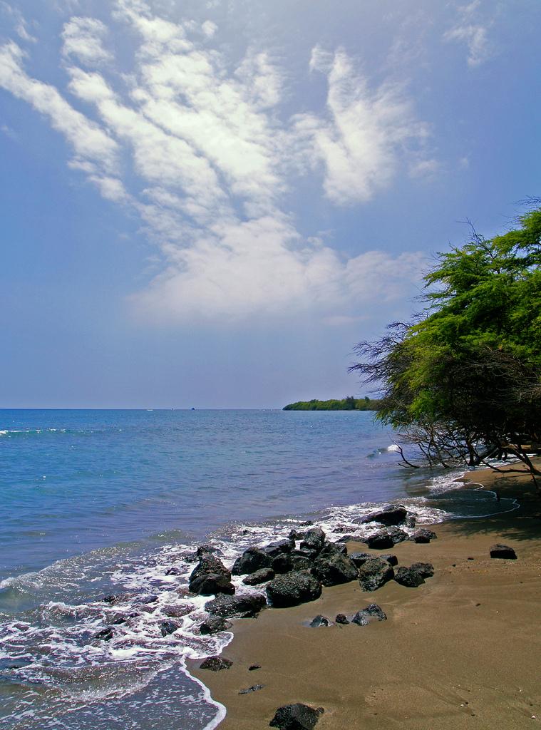 Olowalu Shoreline