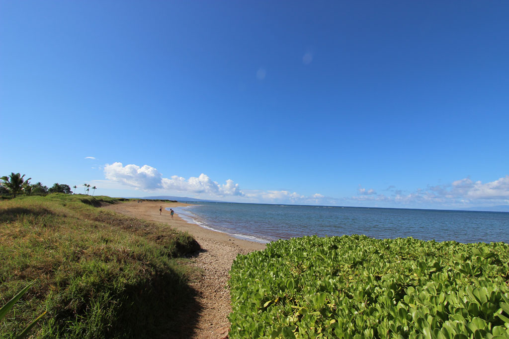 North end of Waipu'ilani beach, facing South
