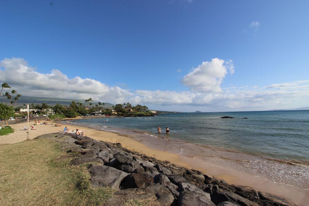 Cove Park Beach
